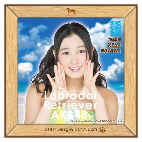 AKB48 ラブラドール・レトリバー推しタオル 野澤 玲奈