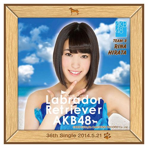 AKB48 ラブラドール・レトリバー推しタオル 平田 梨奈