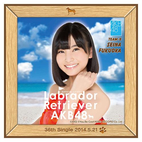 AKB48 ラブラドール・レトリバー推しタオル 福岡 聖菜