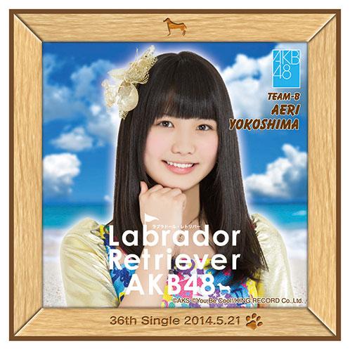 AKB48 ラブラドール・レトリバー推しタオル 横島 亜衿