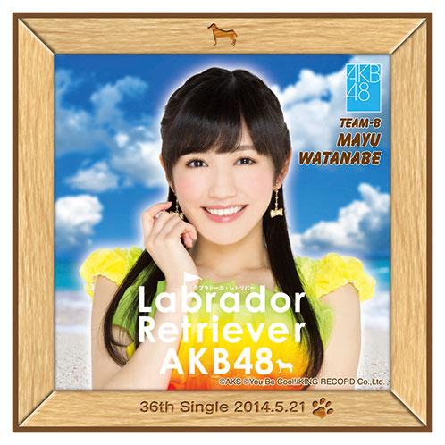 AKB48 ラブラドール・レトリバー推しタオル 渡辺 麻友