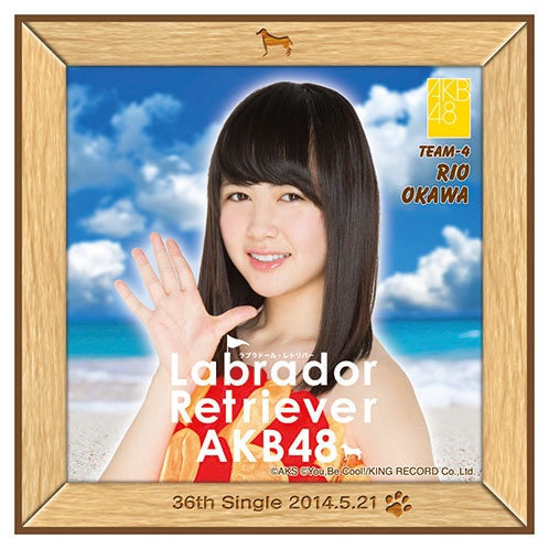 AKB48 ラブラドール・レトリバー推しタオル 大川 莉央