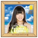 AKB48 ラブラドール・レトリバー推しタオル 岡田 奈々