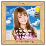 AKB48 ラブラドール・レトリバー推しタオル 加藤 玲奈