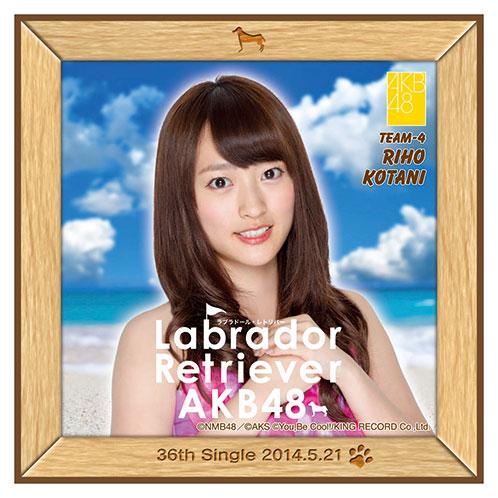 AKB48 ラブラドール・レトリバー推しタオル 小谷 里歩