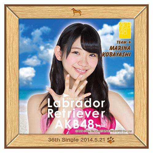AKB48 ラブラドール・レトリバー推しタオル 小林 茉里奈