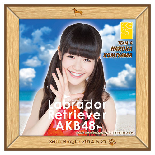 AKB48 ラブラドール・レトリバー推しタオル 込山 榛香