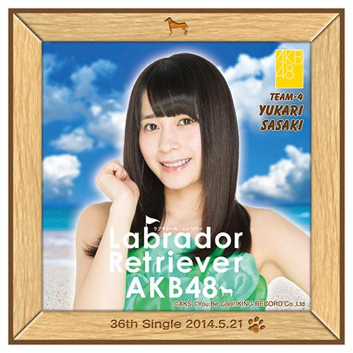 AKB48 ラブラドール・レトリバー推しタオル 佐々木 優佳里
