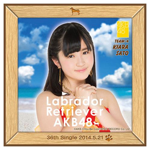 AKB48 ラブラドール・レトリバー推しタオル 佐藤 妃星
