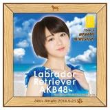 AKB48 ラブラドール・レトリバー推しタオル 峯岸 みなみ