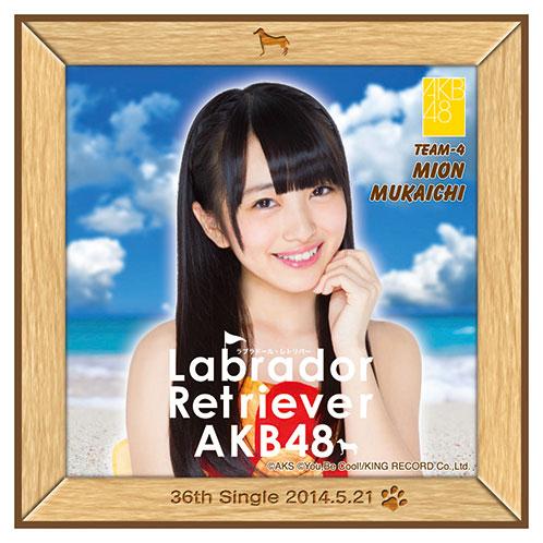 AKB48 ラブラドール・レトリバー推しタオル 向井地 美音