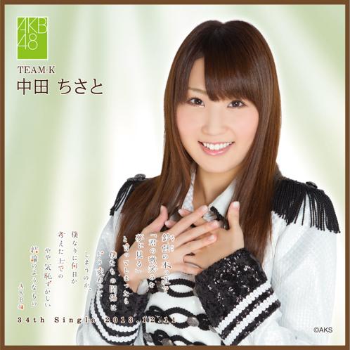 AKB48 鈴懸の木の道で…推しタオル 中田 ちさと