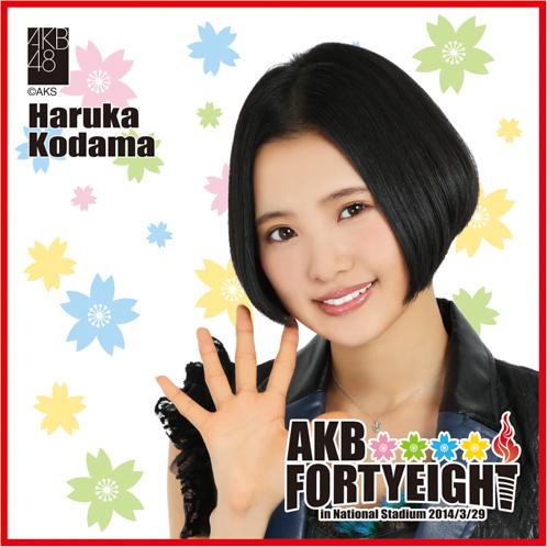 AKB48 国立競技場〜思い出は全部ここに捨てていけ!〜AKB48 推しタオル兒玉 遥
