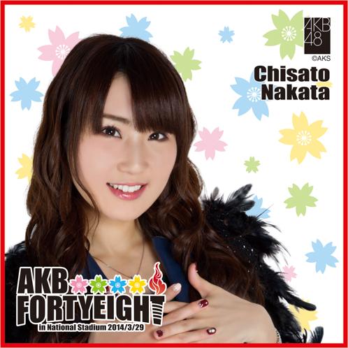AKB48 国立競技場〜思い出は全部ここに捨てていけ!〜AKB48 推しタオル中田 ちさと
