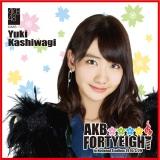 AKB48 国立競技場〜思い出は全部ここに捨てていけ!〜AKB48 推しタオル柏木 由紀