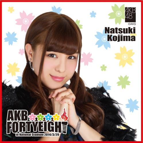 AKB48 国立競技場〜思い出は全部ここに捨てていけ!〜AKB48 推しタオル小嶋 菜月