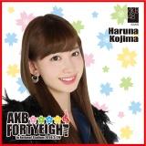 AKB48 国立競技場〜思い出は全部ここに捨てていけ!〜AKB48 推しタオル小嶋 陽菜