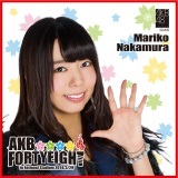 AKB48 国立競技場〜思い出は全部ここに捨てていけ!〜AKB48 推しタオル中村 麻里子