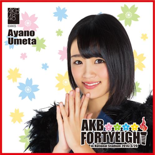 AKB48 国立競技場〜思い出は全部ここに捨てていけ!〜AKB48 推しタオル梅田 綾乃