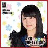 AKB48 国立競技場〜思い出は全部ここに捨てていけ!〜AKB48 推しタオル小嶋 真子