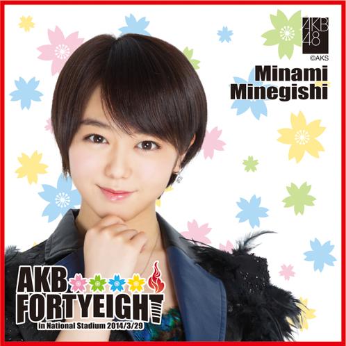 AKB48 国立競技場〜思い出は全部ここに捨てていけ!〜AKB48 推しタオル峯岸 みなみ