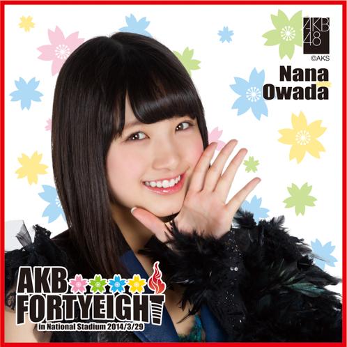 AKB48 国立競技場~思い出は全部ここに捨てていけ!~AKB48 推しタオル大和田 南那