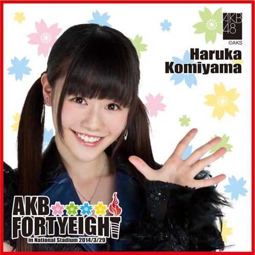 AKB48 国立競技場~思い出は全部ここに捨てていけ!~AKB48 推しタオル込山 榛香