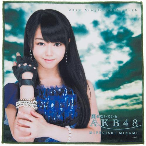 AKB48 風は吹いている 推しタオル 峯岸みなみ