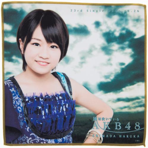 AKB48 風は吹いている 推しタオル 島田晴香