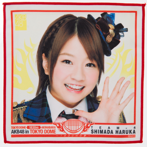 AKB48 TOKYODOME1830mの夢 推しタオル 島田 晴香