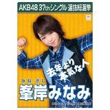 AKB48 37thシングル選抜総選挙 クリアファイル 峯岸 みなみ