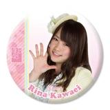 AKB48推しでかんバッジ2川栄 李奈