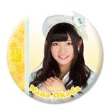 AKB48推しでかんバッジ2岡田 奈々