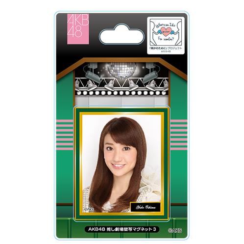 AKB48 推し劇場壁写マグネット3 大島優子