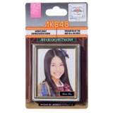 AKB48 推し劇場壁写マグネット2 田野 優花