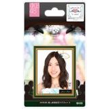 AKB48 推し劇場壁写マグネット4 松井 珠理奈