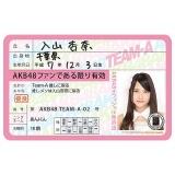 AKB48 推し免許証2 入山杏奈