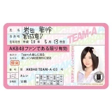 AKB48 推し免許証2 岩田華怜