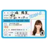 AKB48 推し免許証2 小嶋陽菜