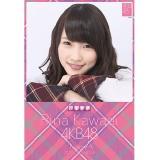 AKB48 卓上タイプカレンダー 2015 川栄李奈
