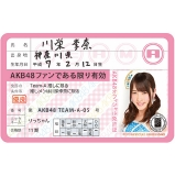 AKB48 推し免許証3 川栄 李奈