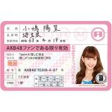 AKB48 推し免許証3 小嶋 陽菜