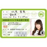 AKB48 推し免許証3 北原 里英