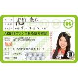 AKB48 推し免許証3 田野 優花