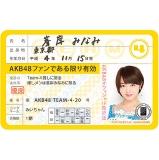 AKB48 推し免許証3 峯岸 みなみ