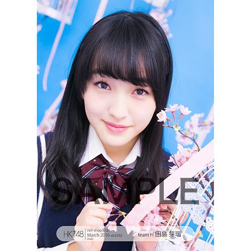 HKT48 2016年3月度 net shop限定個別生写真「青い春~卒業~」5枚セット 田島芽瑠