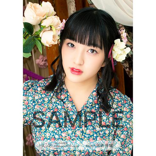 HKT48 2019年2月度 net shop限定個別生写真5枚セットvol.2 田島芽瑠