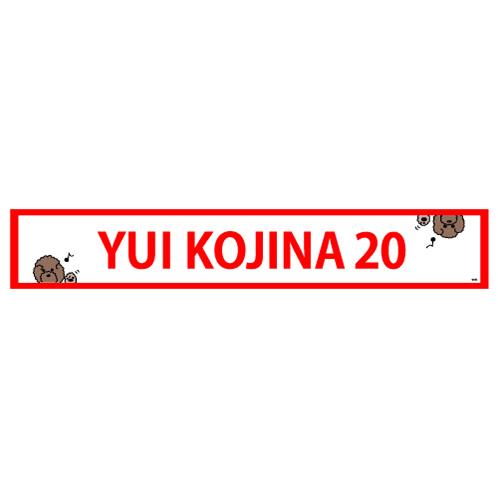 HKT48 生誕記念マフラータオル 2019年1月度 神志那結衣