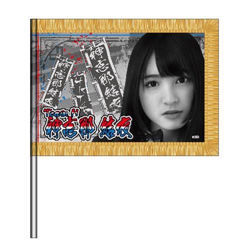 HKT48 夏のホールツアー 2016 個別ミニフラッグ  神志那結衣