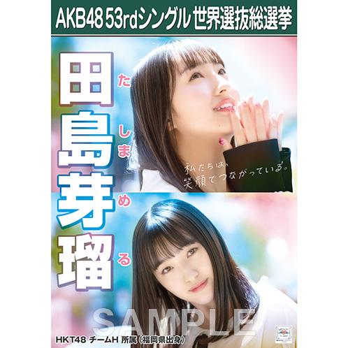 【6月下旬より順次配送】AKB48 53rdシングル 世界選抜総選挙 選挙ポスター 田島芽瑠